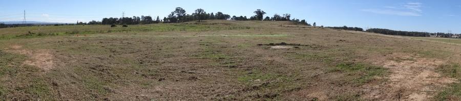 Field Development